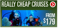 Really Cheap Cruises